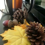 Fall decor to make your home feel cozy