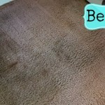 Bissell carpet cleaner review: Don't let your family see this during the holidays
