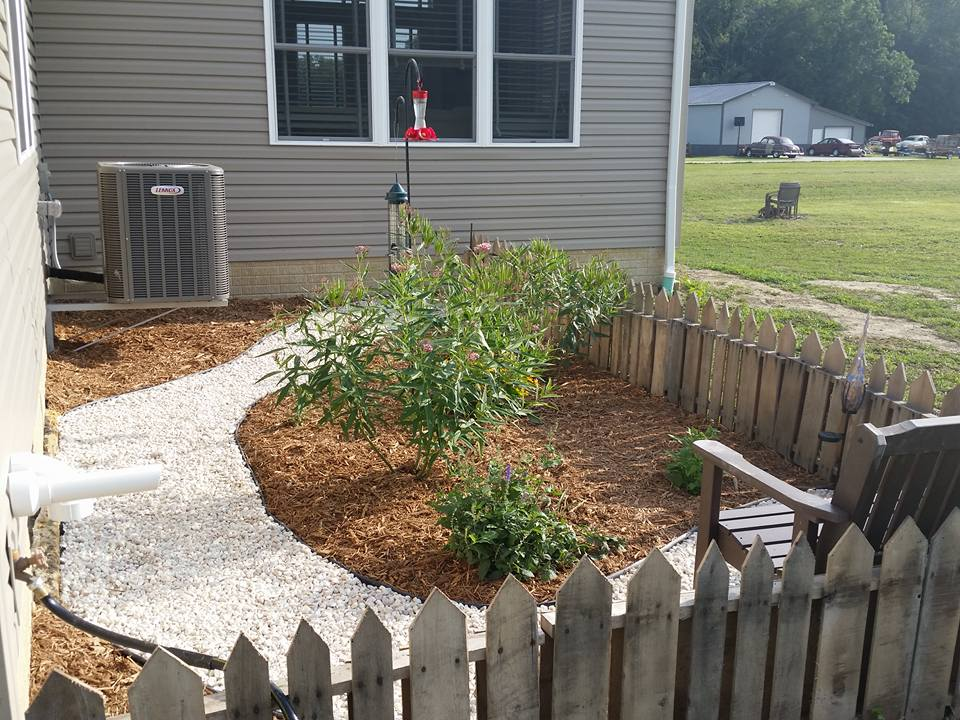 A Butterfly Garden At Home, Inspired By A Trip To Disney World