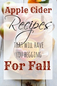 Delicious Apple Cider Recipes That Will Have You Begging For Fall