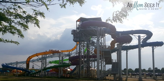 Tropical Plunge at Kings Island in Mason, OH