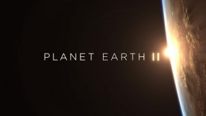See Planet Earth II In Stunning 4K If You're A DISH Customer