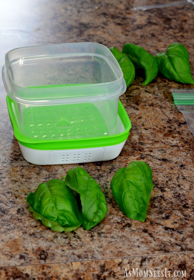 Do the new Rubbermaid FreshWorks containers really keep food fresher?