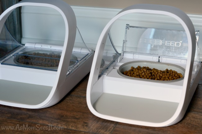 SureFeed Microchip Pet Feeder review